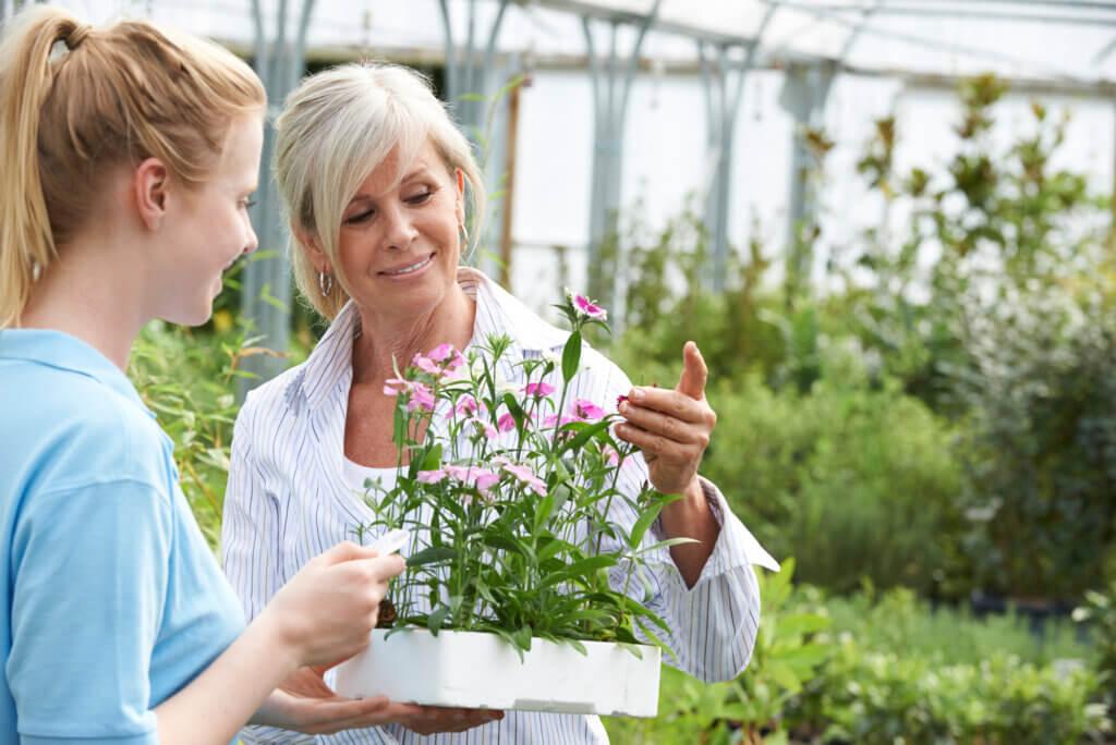 Havearkitekt og kunde